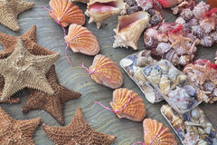 Conchas do mar bonitas da lembrança para a venda em Cancun imagem de stock royalty free