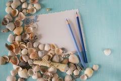Conchas do mar com as folhas de papel e a pena em um fundo azul Fotos de Stock