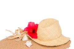 Conchas do mar da American National Standard do chapéu de palha na areia Imagens de Stock