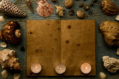 Conchas do mar e estrela do mar no fundo azul rachado O vazios ou abrem um livro velho Termas Fotografia de Stock Royalty Free