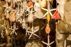 Conchas do mar e estrelas de mar, Gumusluk, Turquia Imagens de Stock Royalty Free