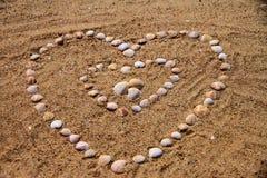 Conchas do mar na areia Imagem de Stock
