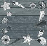 Conchas do mar no fundo de madeira ilustração royalty free