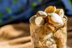 Conchas do mar, rochas e tampões do vinho no copo Imagem de Stock Royalty Free
