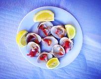 Conchas Finas, shell finos, alimento de mar Imagens de Stock Royalty Free