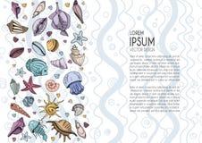 Conchas marinas del vector fijadas stock de ilustración