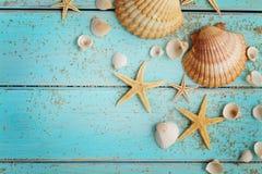 Conchas marinas del verano en fondo de madera fotos de archivo