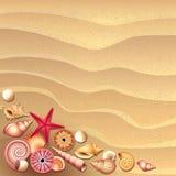 conchas marinas en fondo de la arena ilustración del vector