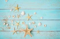 Conchas marinas en fondo de madera imágenes de archivo libres de regalías