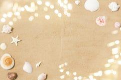 Conchas marinas en la arena de la playa foto de archivo libre de regalías