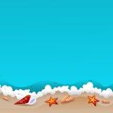 Conchas marinas en la playa Fotografía de archivo