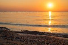 Conchas marinas en la playa del mar contra el contexto de un amanecer colorido Control del foco imagen de archivo