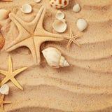 Conchas marinas y arena imagenes de archivo