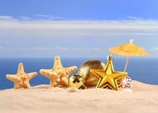 Conchas marinas y estrellas de mar de las decoraciones de la Navidad en una arena de la playa Foto de archivo libre de regalías
