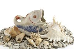 Conchas marinas y pescados de la porcelana fotos de archivo libres de regalías