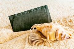 Conchas marinas y una muestra en blanco en una playa tropical Foto de archivo libre de regalías