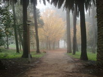 Conchas Park early morning fog Stock Photography