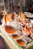 Conches For Sale Stock Photo