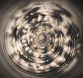Conchiglia 2 di turbinio fotografie stock libere da diritti