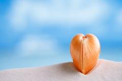Conchiglia rossa del cuore con l'oceano, la spiaggia e la vista sul mare Immagini Stock
