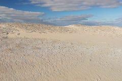 Conchiglie con le dune di sabbia Fotografia Stock
