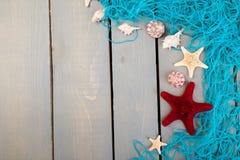 Conchiglie con rete blu su fondo di legno grigio Disposizione piana Fotografia Stock Libera da Diritti
