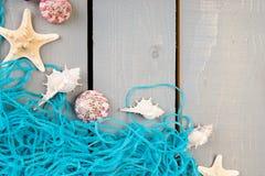 Conchiglie con rete blu su fondo di legno grigio Disposizione piana Fotografie Stock Libere da Diritti