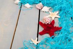 Conchiglie con rete blu su fondo di legno grigio Disposizione piana Immagine Stock