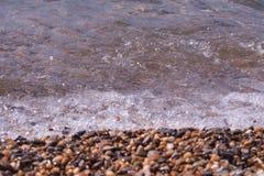 Conchiglie, coralli, pietre del ciottolo per fondo Immagine Stock