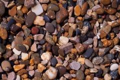 Conchiglie, coralli, pietre del ciottolo per fondo Immagini Stock Libere da Diritti