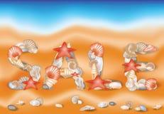 Conchiglie di progettazione di vendita di estate sul fondo della sabbia Fotografie Stock Libere da Diritti