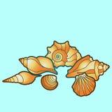 Conchiglie di vettore Stelle marine della pittura della mano royalty illustrazione gratis