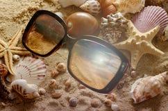 Conchiglie ed occhiali da sole differenti sulla sabbia Priorità bassa della spiaggia di estate Concetto del manifesto di vacanza Fotografie Stock