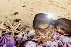 Conchiglie ed occhiali da sole differenti sulla sabbia Priorità bassa della spiaggia di estate Concetto del manifesto di vacanza Immagini Stock
