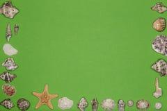 Conchiglie ed ornamento delle stelle marine Fotografia Stock