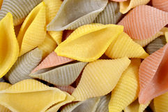 Conchiglie gourmet pasta. Colorful conchiglie gourmet pasta for background use Stock Image