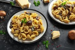 Conchiglie pasta with mushrooms, creamy sauce, parmesan cheese and herbs stock photos
