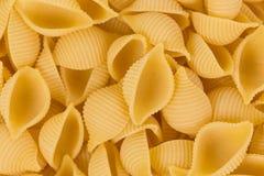 Conchiglie pasta shell Royalty Free Stock Photos
