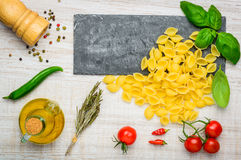 Conchiglie Rigate Pasta and Food Seasoning Royalty Free Stock Photography