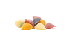 Conchiglie shells Royalty Free Stock Photography