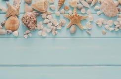 Conchiglie su legno blu, fondo di vacanza del mare Fotografie Stock Libere da Diritti