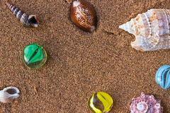 Conchiglie sulla sabbia di mare fotografia stock
