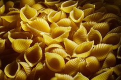 Conchiglioni Italiaanse deegwaren stock afbeelding