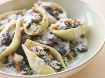 Conchiglioni pasta shells Stock Photo
