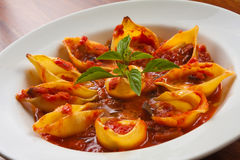Conchiglioni Shell Pasta imagens de stock royalty free