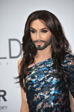 Conchita Wurst Stock Photo