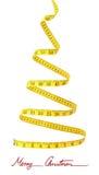 Concierto de la dieta Imagen de archivo libre de regalías