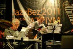 Concierto del jazz Fotografía de archivo libre de regalías