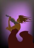Concierto del violín Foto de archivo