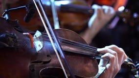 Concierto, varias mujeres que tocan el violín, ascendente cercano de la mano almacen de metraje de vídeo
